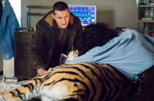 Reba and the Tiger